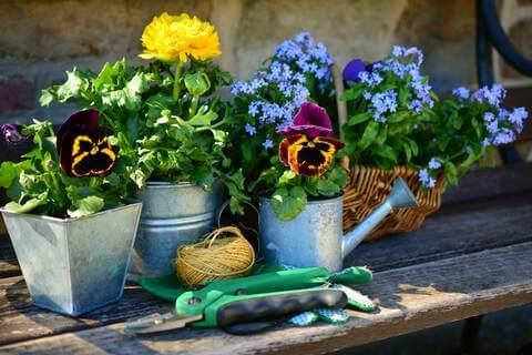 Pflanztisch dekorieren